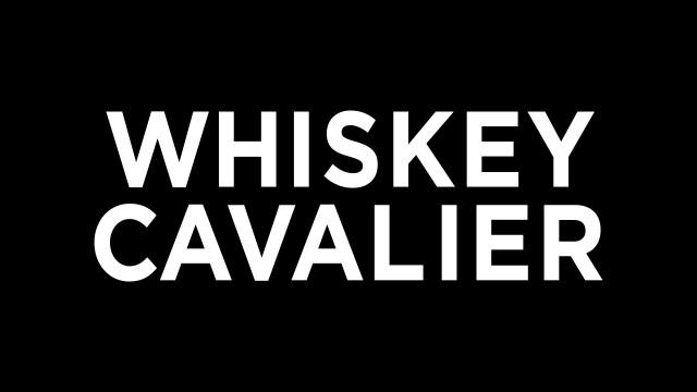 Whiskey Cavalier krijgt geen tweede seizoen