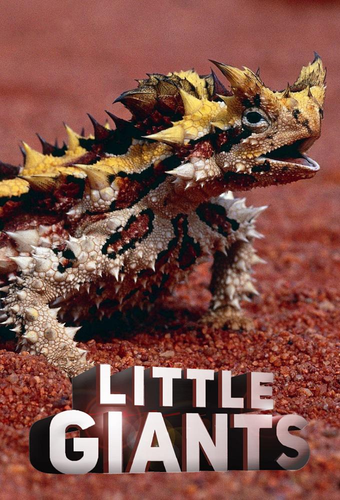 Little Giants (2019)