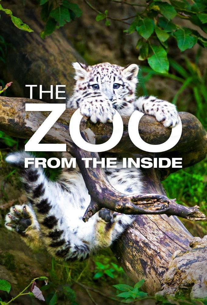 The Zoo: From the Inside